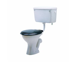 Classic-Toilet-Seat-and-Cover-Black
